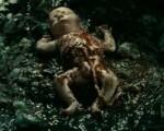 Absurd Birth Scenes – Perfume